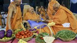 As part of the celebration of two years of his stay in Sarangpur, Swamishri participated in re-creating the annual festivals celebrated in Sarangpur. For re-creating the Hatdi of Prabodhini Ekadashi, Swamishri sanctifies vegetables