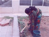 BAPS Cleanliness Drive (Women's Wing), Dahod