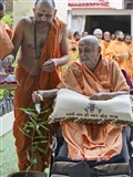 Swamishri sanctifies one of the plants to be distributed for the Tree Planting Initiative, as a part of BAPS environmental activities