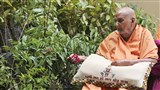 Swamishri sanctifies the plants to be distributed for the Tree Planting Initiative, as a part of BAPS environmental activities