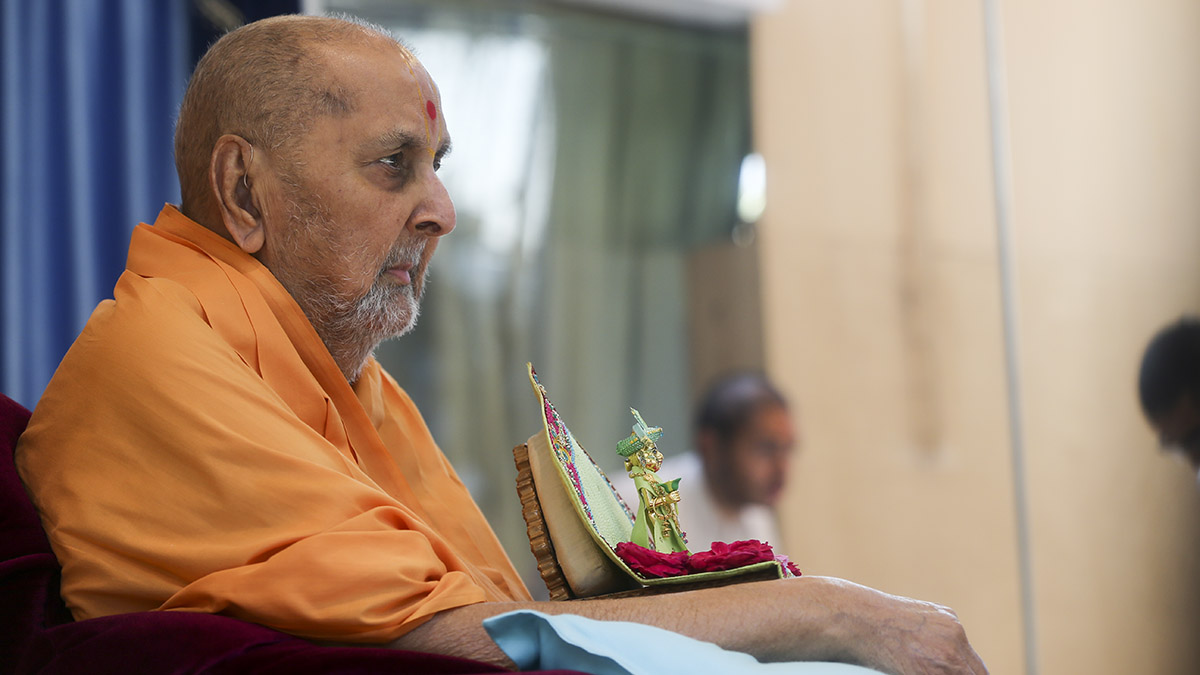 Swamishri arrives in the mandir grounds in the morning