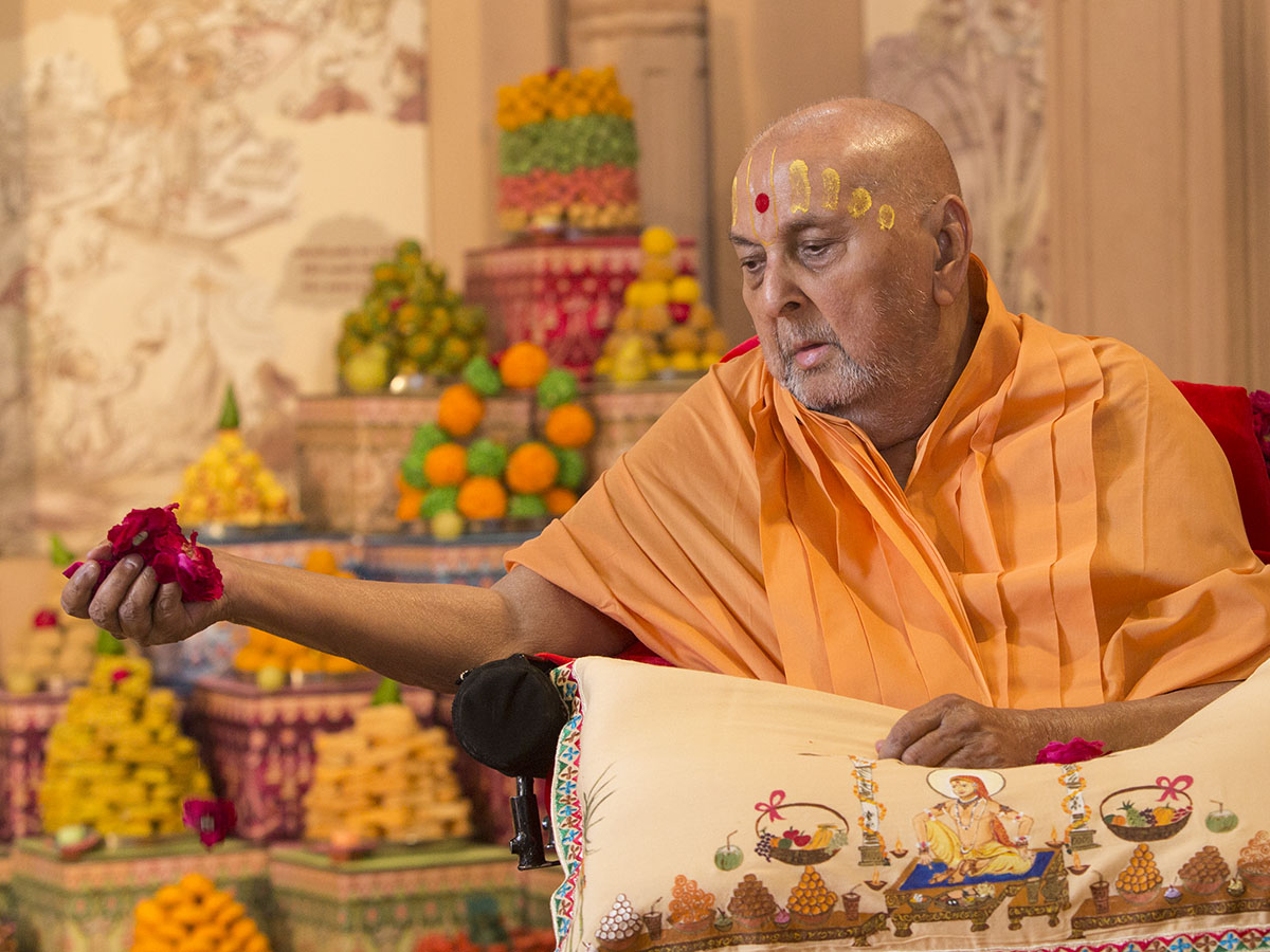 Swamishri showers flower petals