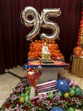 Pramukh Swami Maharaj's 95th Birthday Celebration, Auckland