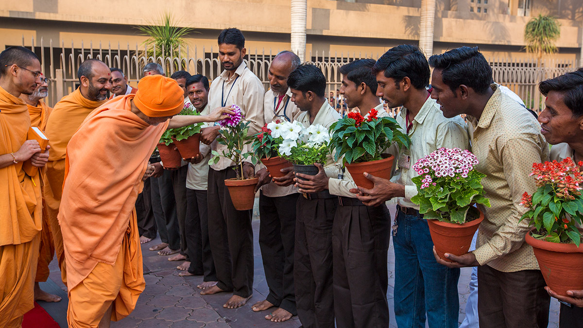 Param Pujya Mahant Swami Maharaj observes a flower, 2 March 2017