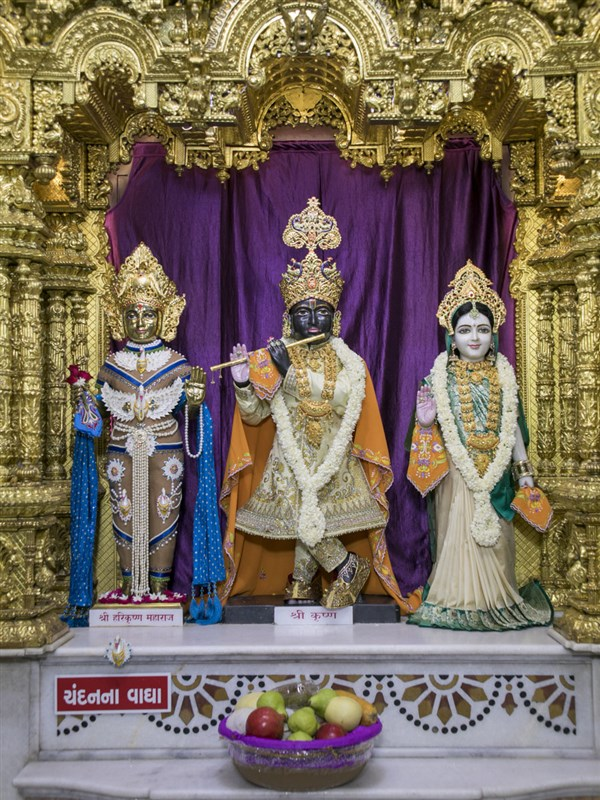 Shri Harikrishna Maharaj and Shri Radha-Krishna Dev, 22 May 2017