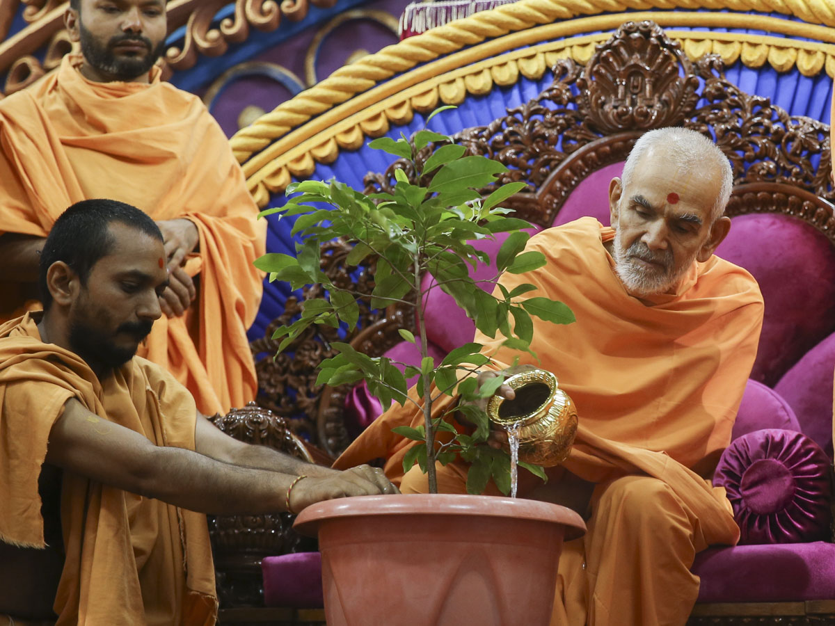 Swamishri waters a plant to commemorate World Environment Day, 5 Jun 2017