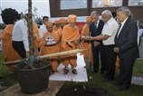 ... Swamishri planted a tree in the centre's grounds