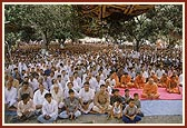 Morning assembly under a natural canopy of mango trees in the mandir complex