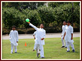 The Swaminarayan Sampraday: 1781 Balaks participate in a dodgeball tournament