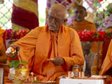 Senior sadhus engaged in patotsav mahapuja rituals