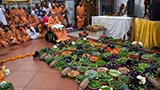 Swamishri viewing the fruits and vegetables arranged in the mandir compound