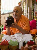 Swamishri holding various fruits and vegetables offered to Thakorji