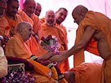 Pujya Viveksagar Swami welcomes Swamishri with flowers