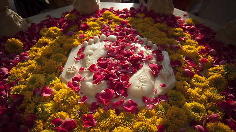 Pushpadolotsav Celebration with Pramukh Swami Maharaj ...