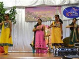 Mahila Din Celebrations 2014, Lenasia