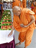 Pujya Ishwarcharan Swami performs pujan of plans