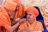 Pujya Ishwarcharan Swami offers 'shiro' to Swamishri on this auspicious occasion