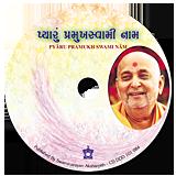 Pyaru Pramukh Swami Naam