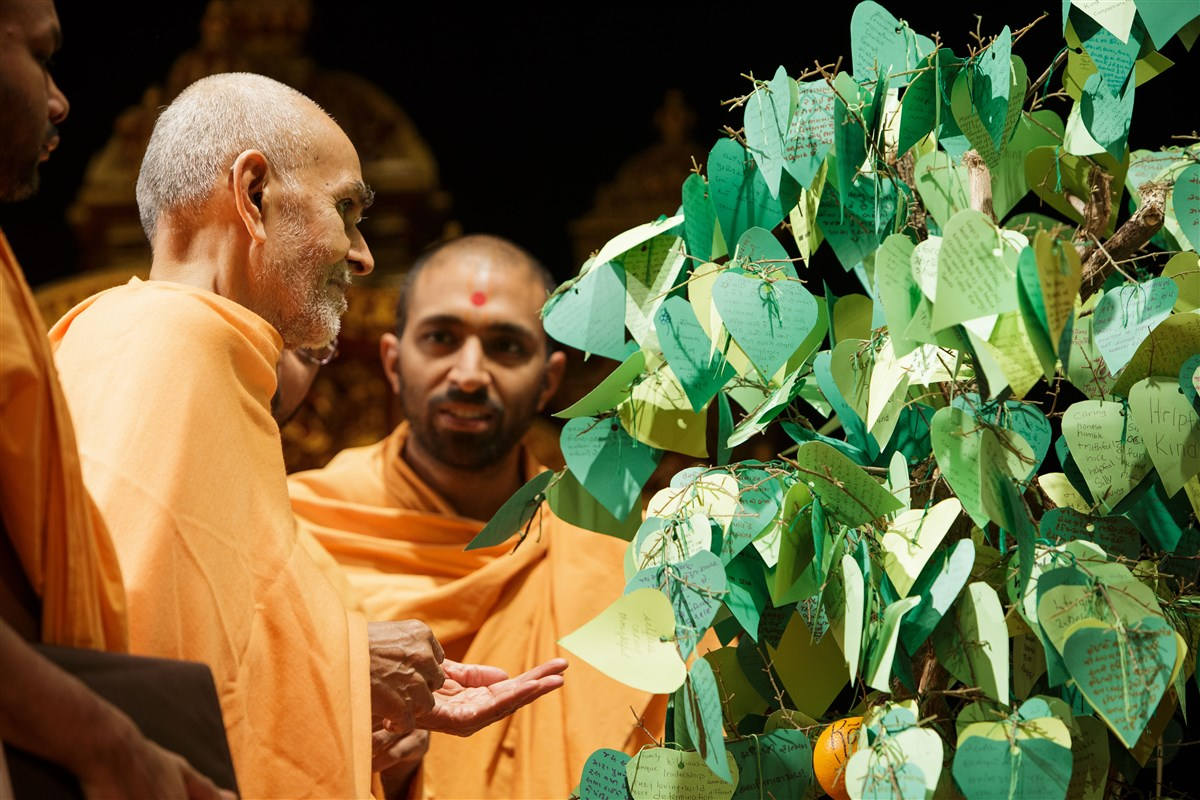Swamishri observes a tree prepared by Mahila Mandal with virtues of volunteers written on each leaf, 18 July 2017