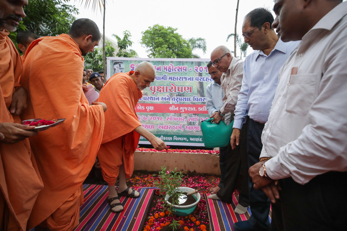 Swamishri blesses a Government Tree Planting initiative