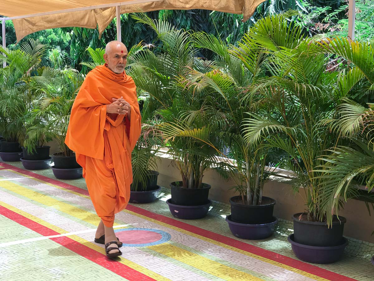 Swamishri walks in the gardens