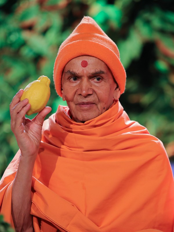 Swamishri sanctifies a lemon