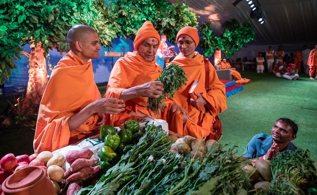Swamishri sanctifies fenugreek leaves