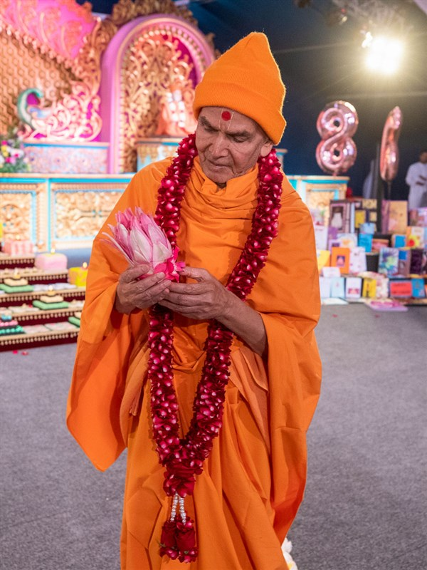 Swamishri observes a lotus flower