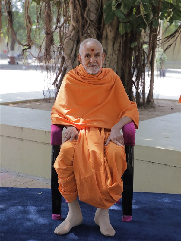 Swamishri seated beneath a banyan tree