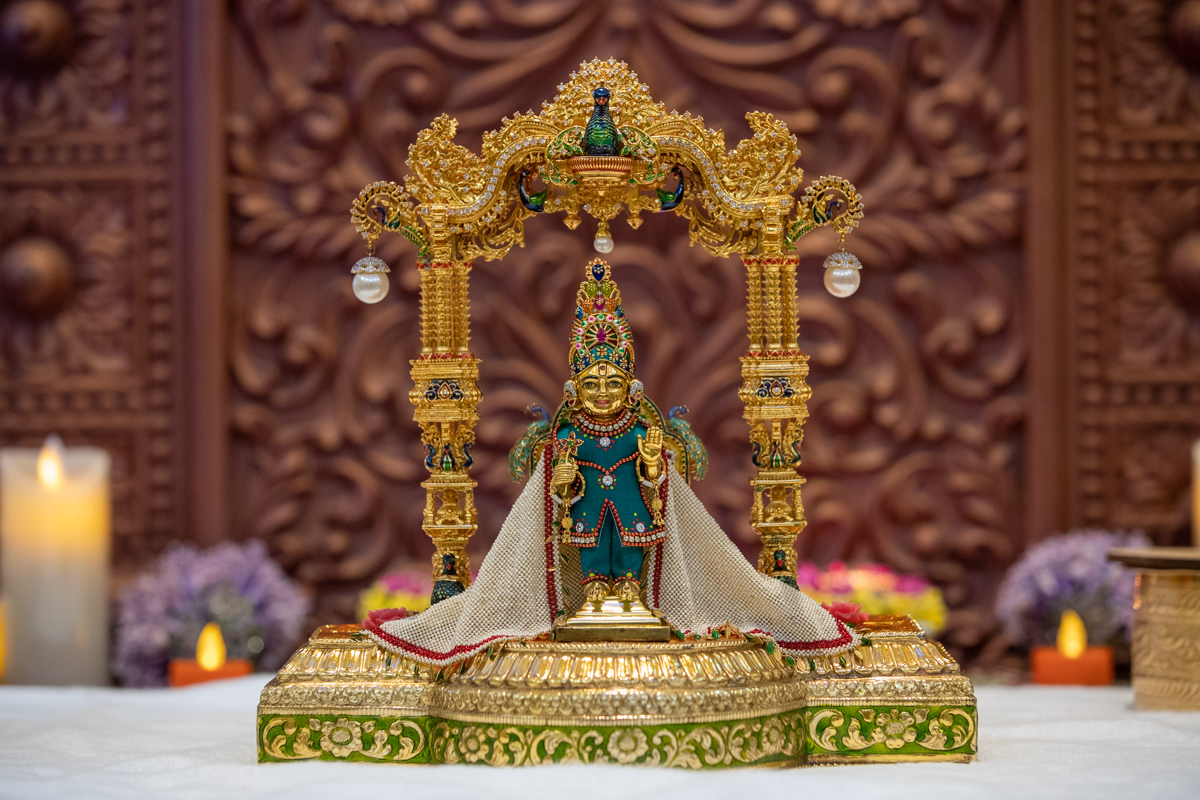 Shri Harikrishna Maharaj morning darshan