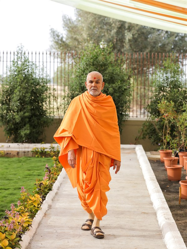 Swamishri walking in the morning