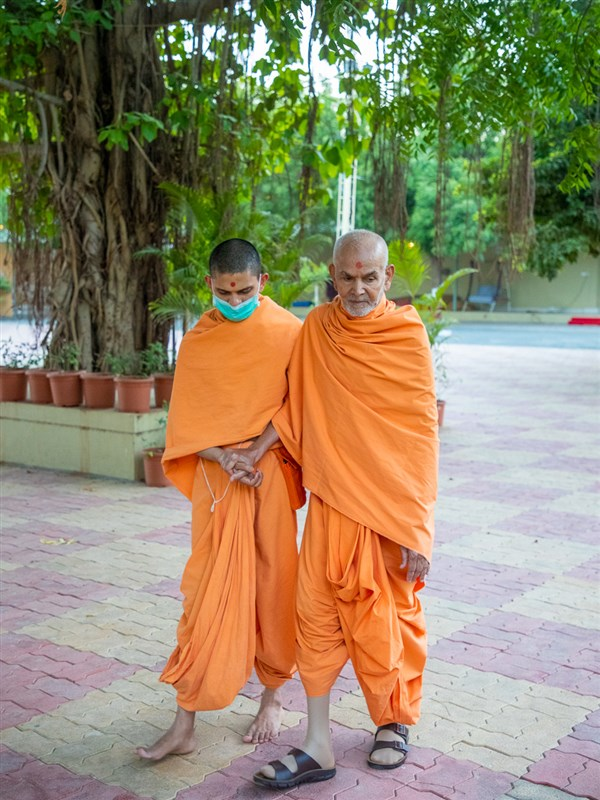 Swamishri in the Shantivan grounds in the evening