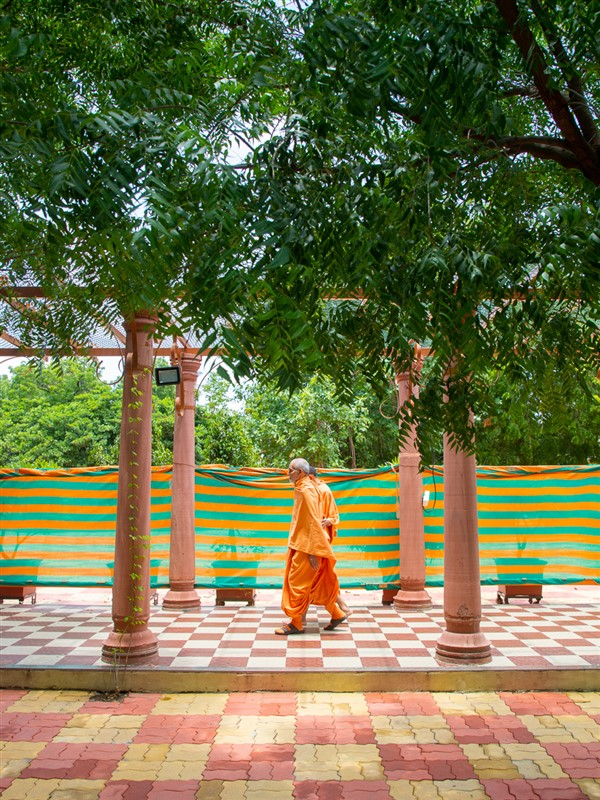 Swamishri during his evening walk in the Shantivan grounds