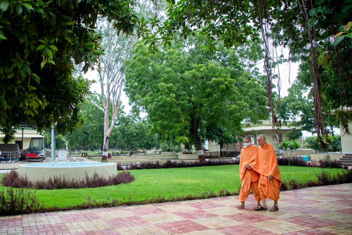 Swamishri in the Shantivan grounds