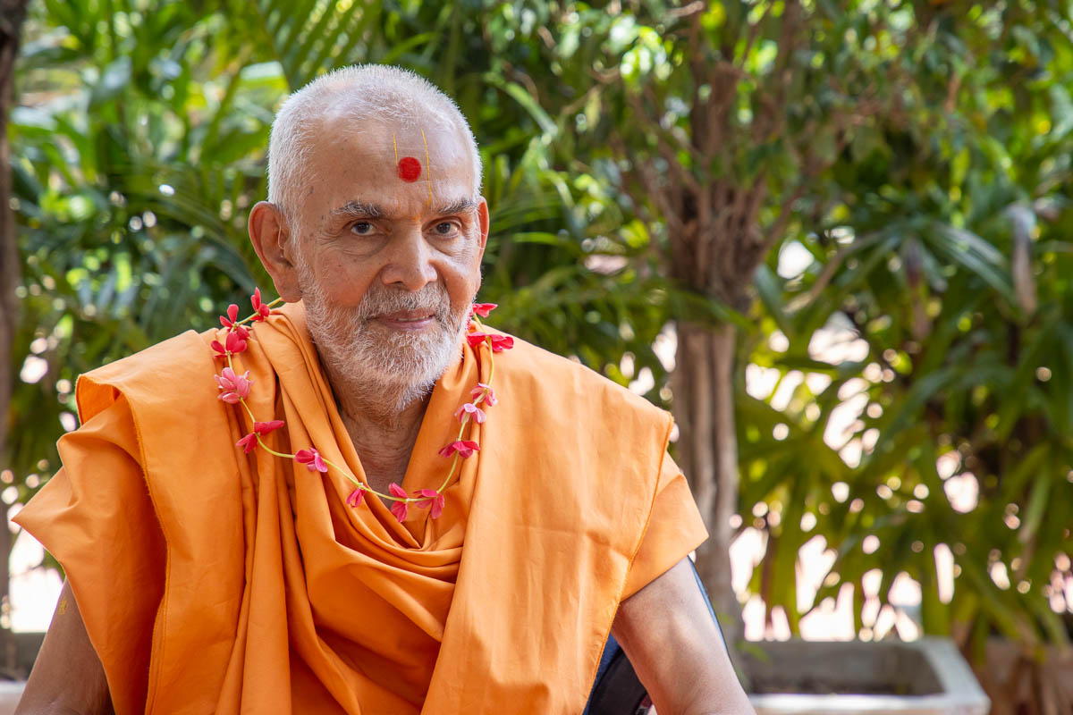 Swamishri honored with the sanctified garland