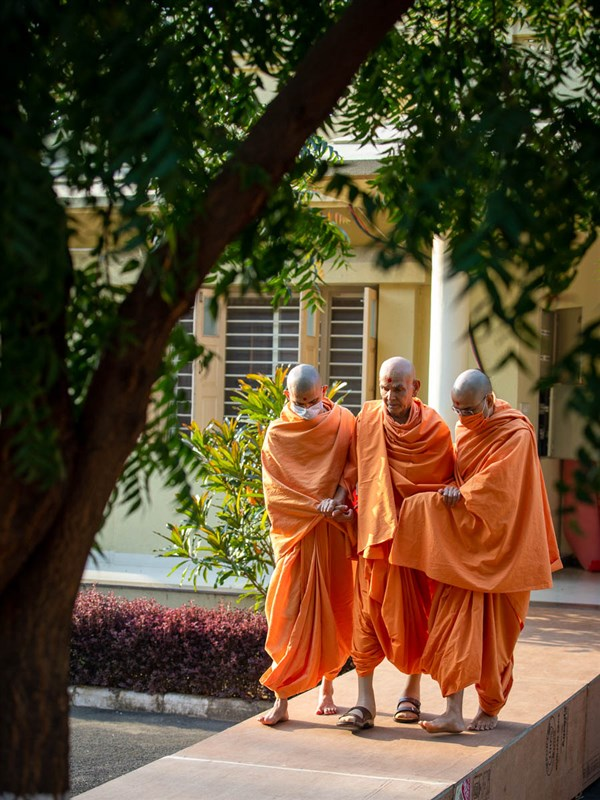 Swamishri arrives for his walk in the morning