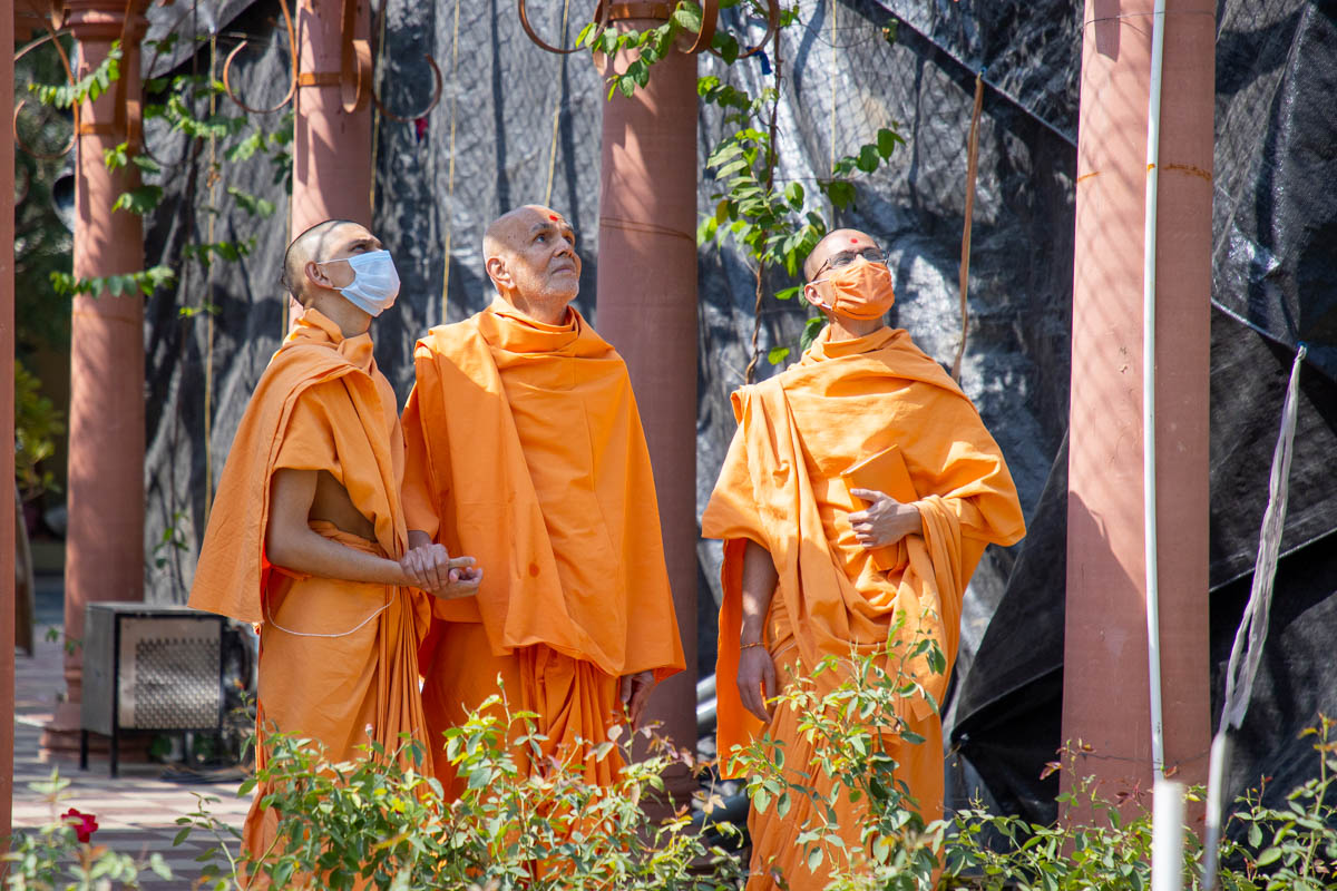 Swamishri observes the greenery of Shantivan