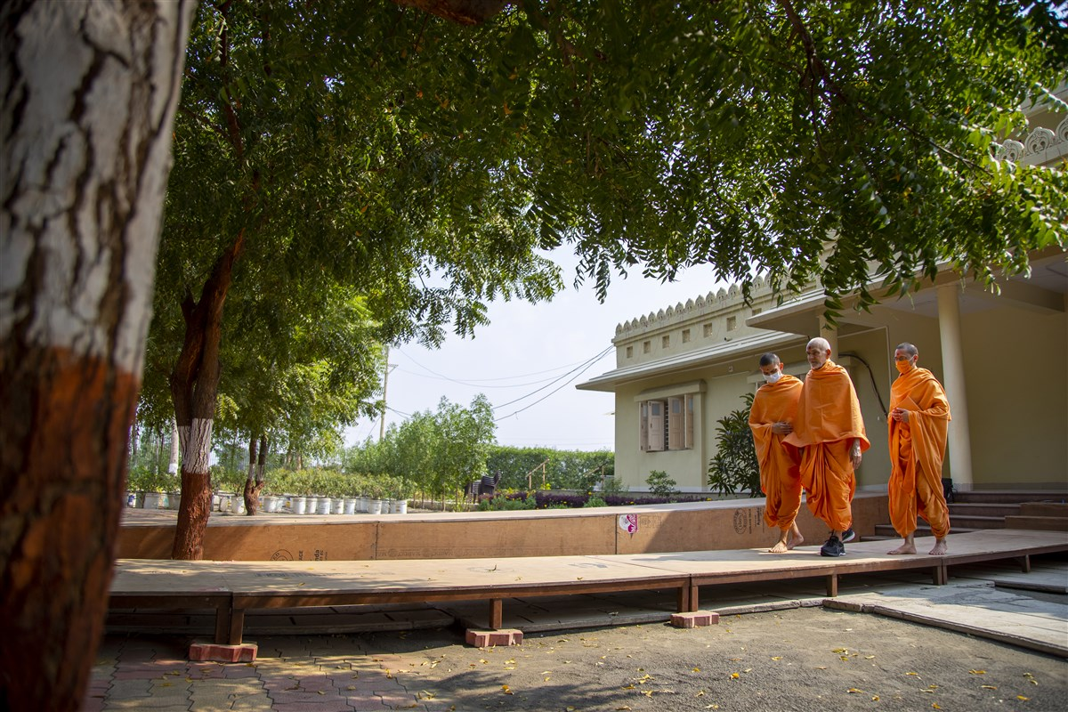 Swamishri arrives for walk in the afternoon