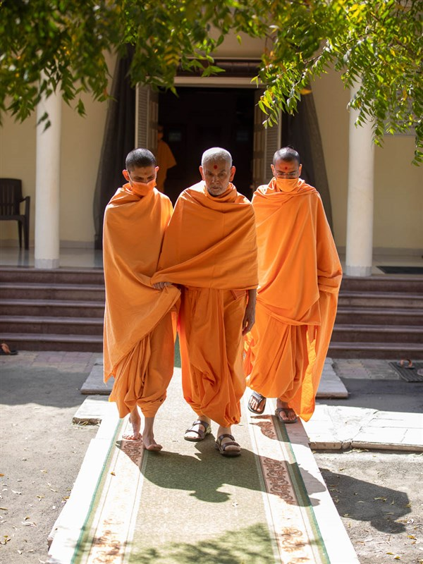 Swamishri arrives for his walk in the afternoon