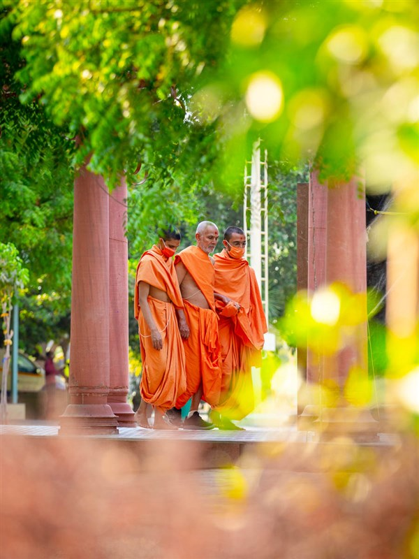 Swamishri during his walk in the evening