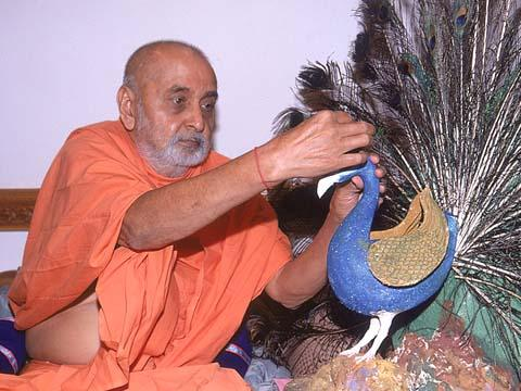 Crowning a peacock as a symbol of appreciation after a presentation by sadhus