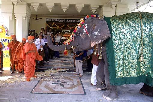 An elephant welcomes Swamishri before the Murti pratishtha assembly
