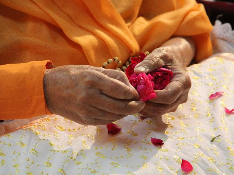 Swamishri performing pujan of the murtis with flower petals