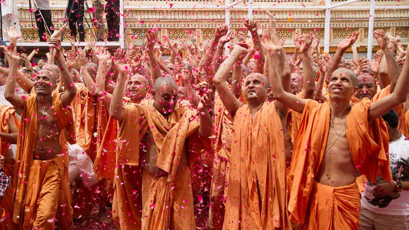 Sadhus enjoy the celebrations with flower petals and rejoice in the presence of Swamishri
