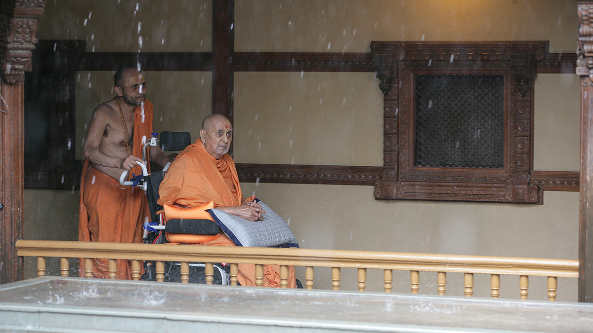 Amidst rain, Swamishri arrives in the mandir grounds in afternoon