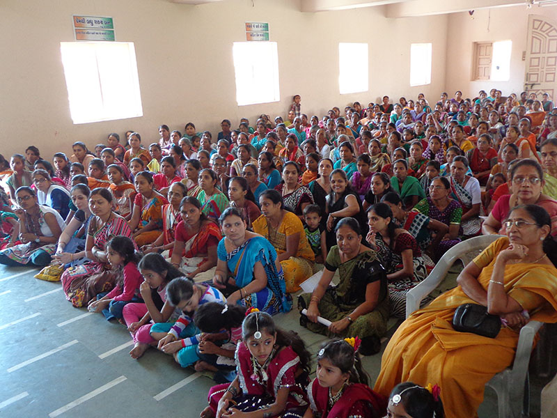 Mahila Din Celebrations 2014, Vyara