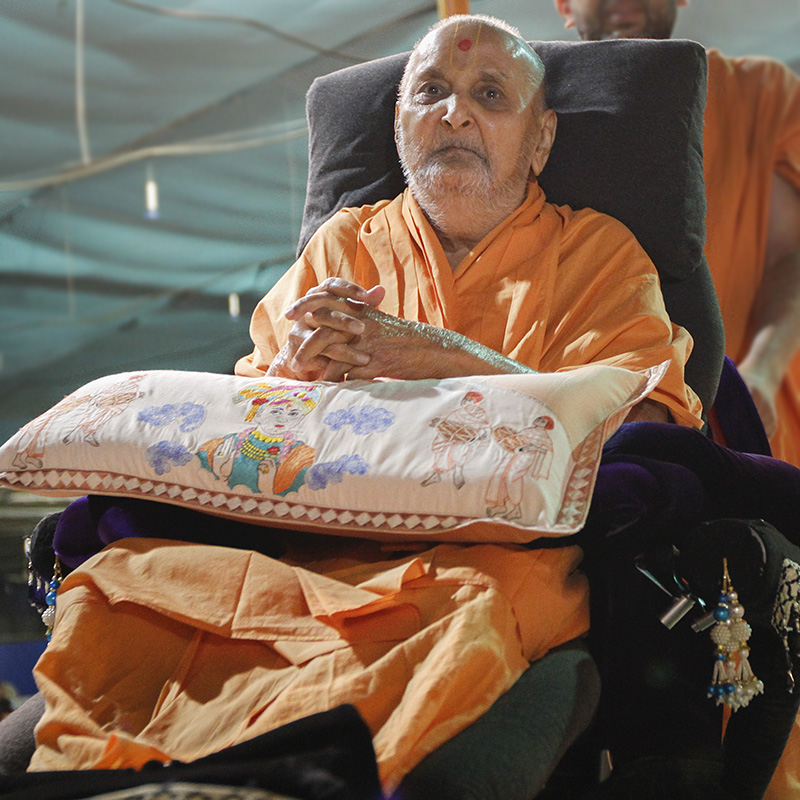 Swamishri arrives in the mandir grounds in the evening