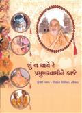Shu Na Thaye Re Pramukh Swamine Kaje